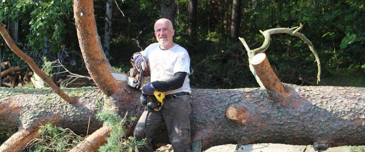 Tilaa puun kaato